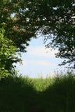 Belle vue Photo libre de droits