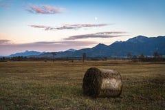 Belle vue au Murnauer Moos en Bavière photos stock