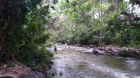 Belle vue d'écoulement d'eau de rivière images libres de droits