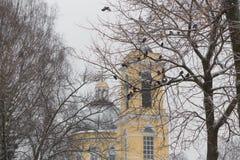 Belle vue d'hiver de cathédrale de Peter et de Paul en parc, Gomel, Belarus Photographie stock