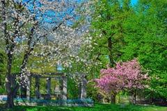 Belle vue d'un parc Images stock