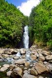 Belle vue d'une cascade située le long de la route célèbre à Hana sur l'île de Maui, Hawaï Photographie stock libre de droits
