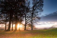 Belle vue de chute par des arbres de paysage anglais typique Images stock