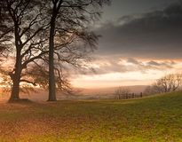 Belle vue de chute par des arbres de paysage anglais typique Photos libres de droits