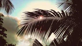 Belle vue de ciel et de nature Images libres de droits