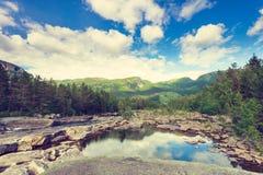Belle vue de fleuve de montagne en été photos libres de droits