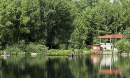 Belle vue de forêt avec la réflexion Image stock