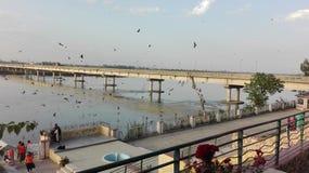 Belle vue de jehlum de rivière images stock