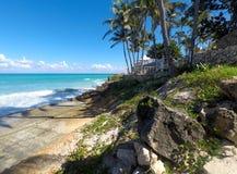 Belle vue de l'océan Vagues, palmiers, fleurs et sable blanc images libres de droits