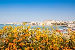 Belle vue de la côte de la ville italienne d'Otranto dans Salento photographie stock libre de droits
