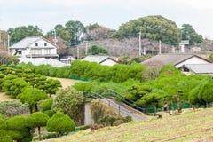 bonzaies et maison japonaise traditionnelle image stock image du okinawa arbres 18185011. Black Bedroom Furniture Sets. Home Design Ideas