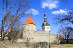 Belle vue de la première tour du ` s avec le mur adjacent de forteresse et du dôme de la tour Oleviste Churchand à Tallinn photographie stock libre de droits