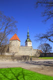 Belle vue de la première tour du ` s avec le mur adjacent de forteresse et du dôme de la tour Oleviste Churchand à Tallinn photo libre de droits