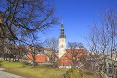 Belle vue de la première tour du ` s avec le mur adjacent de forteresse et du dôme de la tour Oleviste Churchand à Tallinn images libres de droits