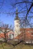 Belle vue de la première tour du ` s avec le mur adjacent de forteresse et du dôme de la tour Oleviste Churchand à Tallinn photo stock