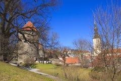 Belle vue de la première tour du ` s avec le mur adjacent de forteresse et du dôme de la tour Oleviste Churchand à Tallinn photographie stock