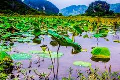 Belle vue de lac avec les montagnes Photo libre de droits