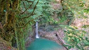 Belle vue de paysage de cascade Cascade dans la forêt vert-foncé photo libre de droits