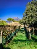 Belle vue de Pompeii Italie photographie stock