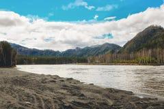 Belle vue de rivière de montagne en été, montagnes d'Altai, Russie Image libre de droits
