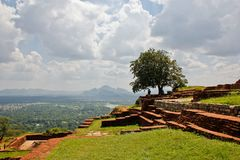 Belle vue de Sigiriya avec le grand arbre photos stock