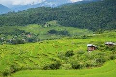 Belle vue des gisements de riz et des maisons traditionnelles de ferme, Bhutan Photographie stock