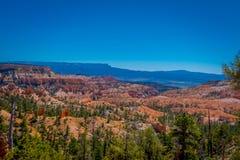 Belle vue extérieure de forêt Bryce Canyon National Park Utah de pin de pinyon image stock