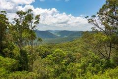Belle vue panoramique au-dessus des voûtes tropicales de forêt tropicale Image libre de droits