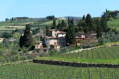 Belle vue panoramique des zones résidentielles Radda dans le chianti et les vignobles et les oliviers dans la région de chianti,  photo libre de droits