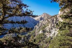 Belle vue par les arbres à une des crêtes de montagne Image stock