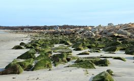 Belle vue tôt de ressort de plage de Duxbury images stock
