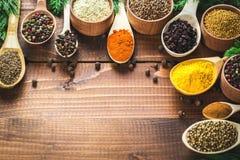 Belles épices colorées Image stock