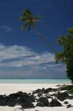Belles îles Cook tropicales de plage Images libres de droits