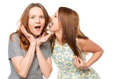 Belles amies disant des secrets Images stock