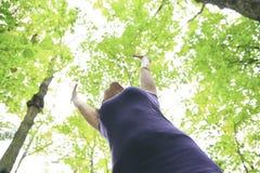 Belles 30 années de femme se tenant dans la forêt Image stock
