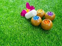 Belles bougies parfumées sur la pelouse verte Photo libre de droits