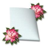 Belles branche et feuille de papier roses tirées par la main Images stock