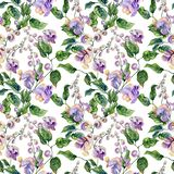 Belles brindilles de vigne d'escargot avec les fleurs pourpres sur le fond blanc Configuration florale sans joint Peinture d'aqua illustration de vecteur