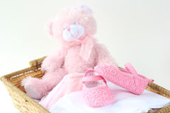 Belles chaussures de roses pâles Photo stock