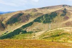 Belles collines aux montagnes carpathiennes Images libres de droits