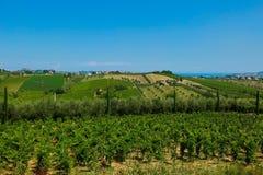 Belles collines dans la province de Teramo Photographie stock libre de droits