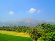 Belles collines du Kerala Photo libre de droits