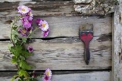 Belles couleurs et brosse Photo libre de droits