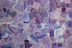 Belles couleurs violettes faisant face au fond de pierres image libre de droits