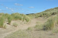 Belles dunes de sable images stock