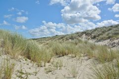 Belles dunes de sable photo stock