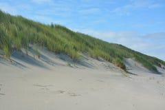 Belles dunes de sable photo libre de droits