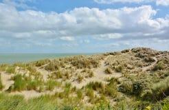 Belles dunes de sable photos libres de droits