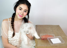 Belles femmes avec des chats et des aliments pour chats Photos stock