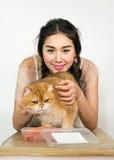 Belles femmes avec des chats et des aliments pour chats Images libres de droits